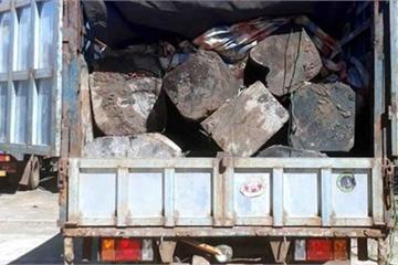 Gia Lai: Tài xế bỏ lại xe chất đầy gỗ lậu, chạy 'bạt mạng' khi thấy Công an