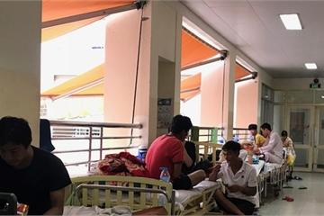 TPHCM: Gần 5000 ca mắc sốt xuất huyết trong 6 tháng đầu năm