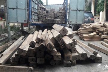 Hà Tĩnh: Bắt giữ xe tải chở hàng trăm khúc gỗ không rõ nguồn gốc