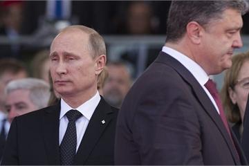 """Lý do cựu đại diện NATO tại Moscow cáo buộc Nga """"đâm sau lưng"""" Ukraine?"""