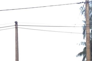 Hà Tĩnh: Người đàn ông bị điện giật tử vong tại hồ tôm trong đêm