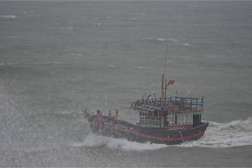 Hỗ trợ y tế cho ngư dân bị nạn trên biển Nha Trang