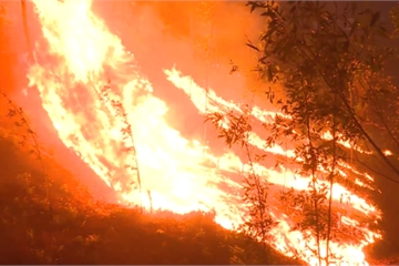 Video: Hơn 70ha rừng thông, keo tràm ở Huế chìm trong biển lửa