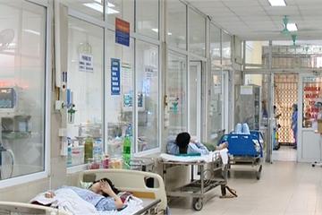 16 người tử vong vì sốt xuất huyết: Bỏ túi ngay những điều này để phòng bệnh