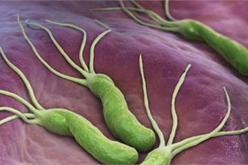 Chuyên gia tiết lộ thực phẩm kiềm chế vi khuẩn gây ung thư dạ dày