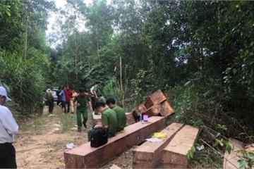 """Đắk Lắk: Truy tìm các đối tượng liên quan đến bãi tập kết gỗ """"khủng"""""""