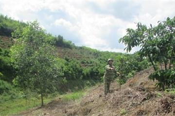 """Vụ đền bù """"nhầm"""" gần 6 tỉ đồng ở Đắk Nông: Người chây ì, kẻ đã... đi xa"""