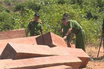 Đắk Lắk: Phát hiện thêm 500m3 gỗ bị lâm tặc cưa hạ