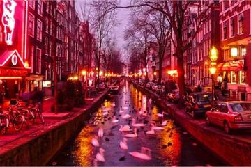Diễn đàn mại dâm nổi tiếng nhất Hà Lan vừa bị tin tặc đánh cắp dữ liệu