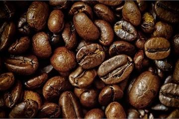 """Ý tưởng """"độc"""": Rang cà phê trong không gian"""