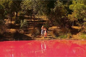 Bí ẩn hồ nước lạ chuyển màu hồng ùn ùn người kéo đến chụp ảnh
