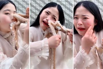 Liều mình thử ăn bạch tuộc sống và cái kết bất ngờ