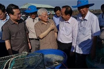 Tổng Bí thư, Chủ tịch nước Nguyễn Phú Trọng thăm, làm việc tại Kiên Giang