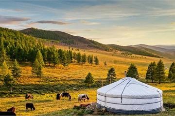 Khám phá đất nước con người Mông Cổ