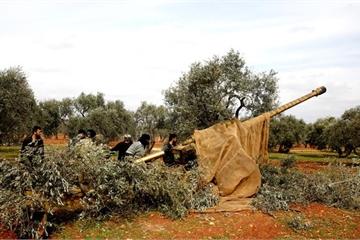 Quân đội Syria tiếp tục pháo kích ở Idlib, Thổ Nhĩ Kỳ hứng thêm thương vong