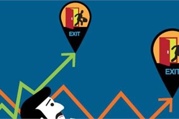 Thị trường Chứng khoán ngày 21/12: Tín hiệu phục hồi?