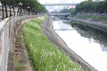 Một doanh nhân trẻ Hà Nội cam kết hồi sinh vĩnh viễn dòng sông Tô Lịch