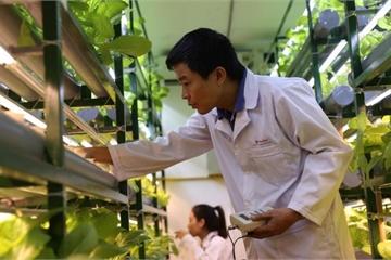 Chế tạo thành công 8 loại đèn LED phục vụ nông nghiệp công nghệ cao