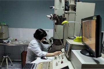 Bộ KH&CN phê duyệt 3 đề tài nghiên cứu về virus Corona
