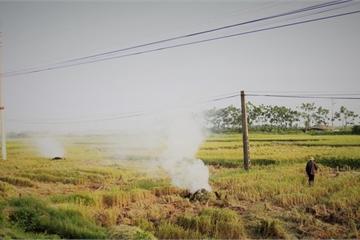 Bộ TN&MT thông tin nguyên nhân gây ô nhiễm không khí ở Hà Nội, TP.HCM