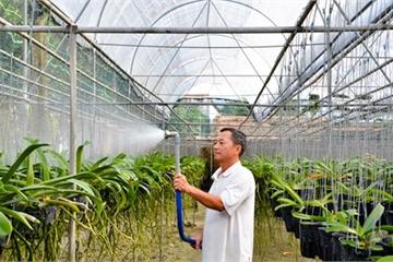 Huyện Long Điền (Bà Rịa-Vũng Tàu): Đổi thay từ xây dựng Nông thôn mới