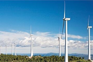 Ế điện gió, giám đốc than khổ, lo không trả được nợ ngân hàng