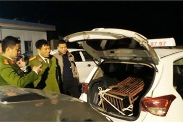 Chở gấu hơn 100kg từ Hà Tĩnh đi Nghệ An tiêu thụ bằng xe taxi