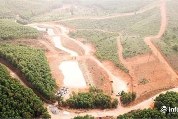 """Chủ rừng bạt đồi xây dự án: """"Chỉ cho phép làm nhà tạm, không ngờ họ làm cái khác""""!"""