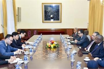 Việt Nam mong muốn đẩy mạnh quan hệ hợp tác với các nước châu Phi