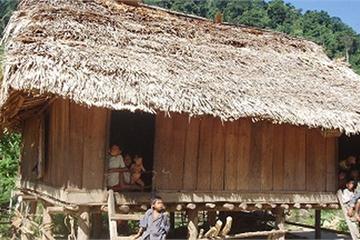 Thực hư chuyện người Mày ở Quảng Bình bỏ vào rừng để trốn dịch Covid-19