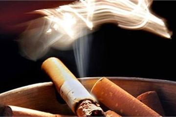 Quỹ phòng chống tác hại thuốc lá hoạt động như thế nào ?