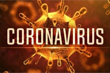 """Vì sao virus Corona chỉ """"thích"""" tấn công phổi?"""