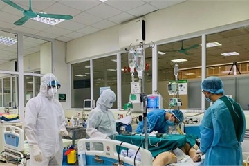 Vì sao ngoài phổi, virus Sars-CoV-2 tấn công cả vào tim, gan, não, thận?