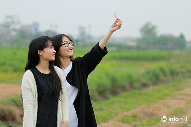Dịu dàng mùa hoa cải ven Hà Nội - ảnh 7