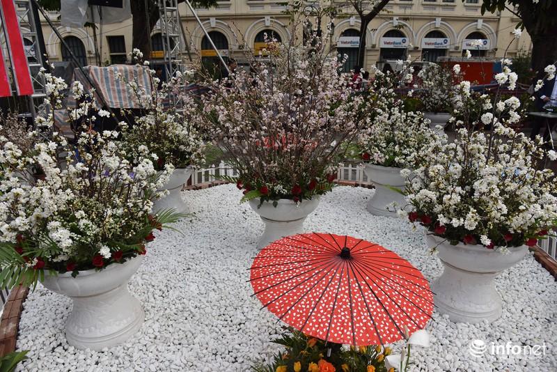 Chưa khai mạc, lễ hội hoa anh đào Nhật Bản đã hút hàng nghìn người Hà Nội - ảnh 8