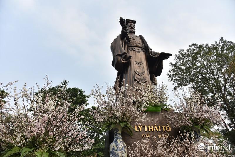 Chưa khai mạc, lễ hội hoa anh đào Nhật Bản đã hút hàng nghìn người Hà Nội - ảnh 10