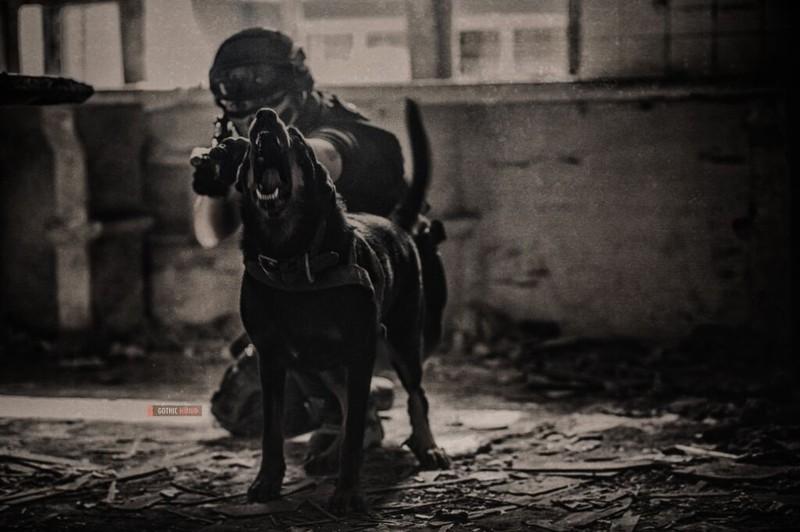 Cận cảnh trang phục, vũ khí trong phim hành động VN theo phong cách Holywood - ảnh 18