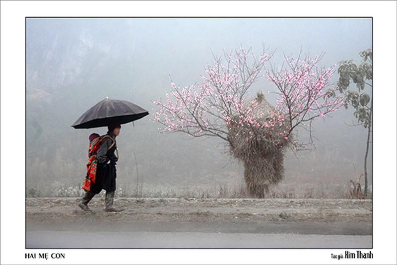 Quê hương tuyệt đẹp qua ống kính của các nữ nhiếp ảnh TP. Hồ Chí Minh - ảnh 4