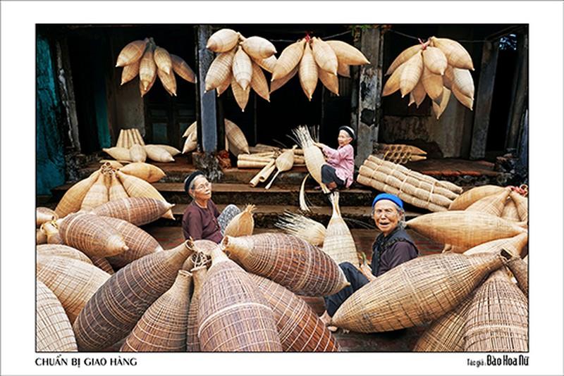 Quê hương tuyệt đẹp qua ống kính của các nữ nhiếp ảnh TP. Hồ Chí Minh - ảnh 6