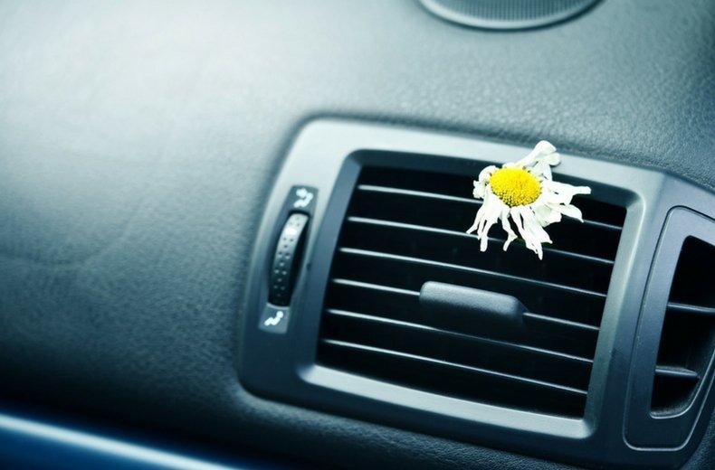 độ ẩm trên xe hơis