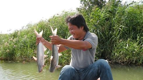 Bỏ đại học, lãi bạc tỷ nhờ nuôi cá bông lau - ảnh 1