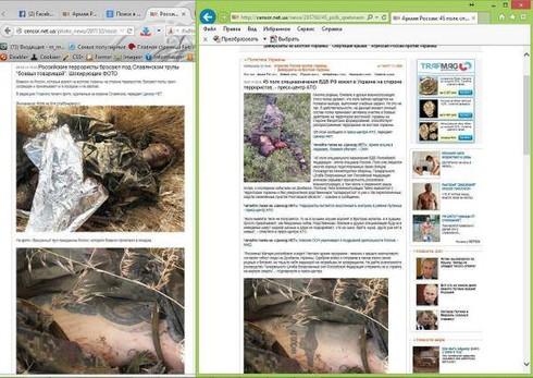 Ukraine: Quân ly khai đã bị chia cắt thành hai - ảnh 2