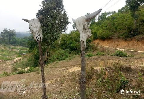 Vùng đất sọ trâu bí ẩn của bộ tộc ít người ở Hà Giang - ảnh 11
