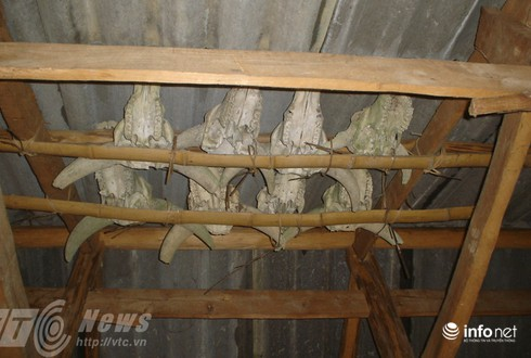 Vùng đất sọ trâu bí ẩn của bộ tộc ít người ở Hà Giang - ảnh 13