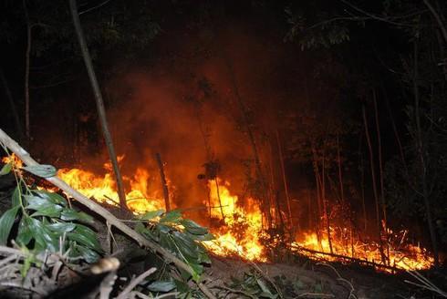 Hà Tĩnh: Hàng trăm cán bộ kiểm lâm chữa cháy rừng dữ dội lúc giữa đêm - ảnh 1