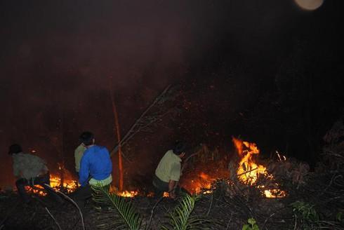 Hà Tĩnh: Hàng trăm cán bộ kiểm lâm chữa cháy rừng dữ dội lúc giữa đêm - ảnh 5
