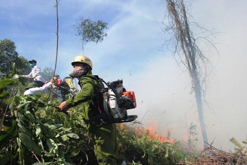 Hà Tĩnh: Hàng trăm cán bộ kiểm lâm chữa cháy rừng dữ dội lúc giữa đêm - ảnh 8