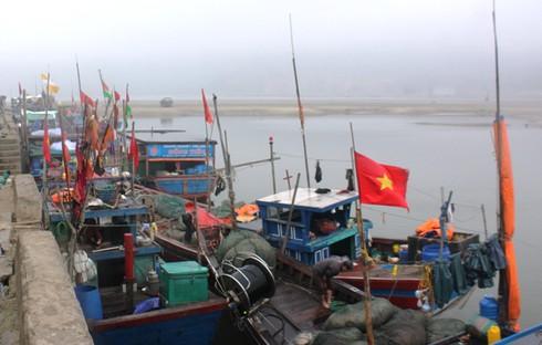 Tàu thuyền ngoại tỉnh ồ ạt vào cảng neo đậu do biển động - ảnh 2