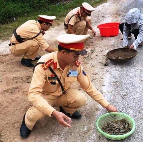 Nghệ An: CSGT giúp dân thu gom tôm, cua đổ giữa đường - ảnh 2