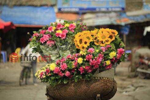 Hà Nội: Đào, hoa ra phố ngày Rằm tháng Chạp - ảnh 12